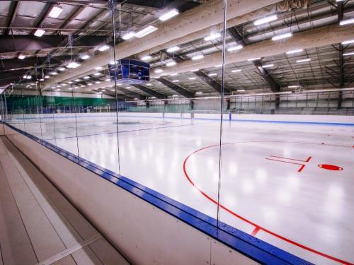 Hokejové mantinely v nedalekém Neměcku 2021 - Další z řady profesionálních hokejových mantinelů z naší...