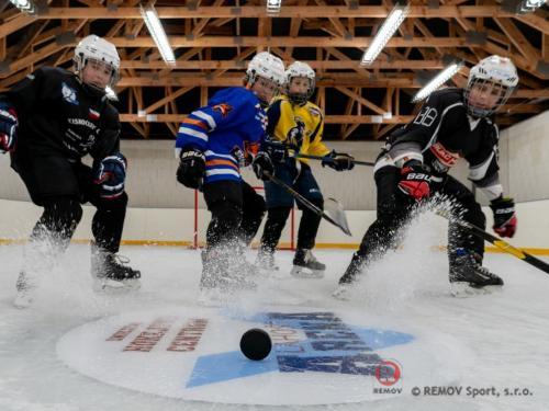 Malá hokejová aréna 2021 - Leden 2021 - CZ - Pro soukromého investora realizace HOKEJOVÉ ARENY -  mobilní ledové...